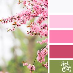Explore the colors of nature with these 25 color palettes inspired by flowers, bouquets and gardens. Floral color inspiration for wedding color palettes or flower arrangements and more. Spring Color Palette, Nature Color Palette, Colour Pallete, Spring Colors, Colour Schemes, Color Palettes, Color Combos, Baby Pink Colour, Wall Colors