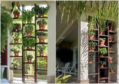 Create a Vertical Garden with a Bookcase and Terracotta Pots