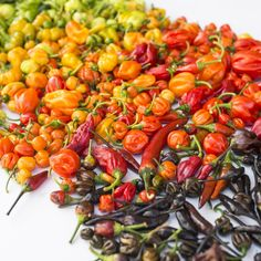 The world's hottest peppers listed by country.