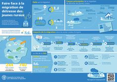 Faire face à la migration de détresse des jeunes ruraux Agriculture, Farming, Zone Rurale, La Migration, Food Insecurity, Edd, Public Health, Sustainable Living, Infographic