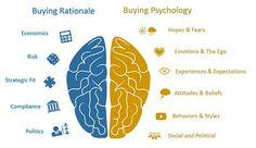 #cerveau et processus d'achat des clients