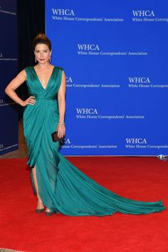 Sophia Bush in Monique Lhuillier. See what all the celebrities, including Chrissy Teigen and Martha Stewart, wore at the White House Press Correspondents' Dinner.