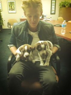 cody simpson twiiter | Cody Simpson : Cody a voulu faire adopter ces adorables chiots | fan2