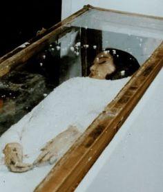 Sierva de Dios Angela Iacobellis. (1948 † 1961). Roma . El 21 de Noviembre de 1997, el cuerpo de Angela fue encontrado intacto
