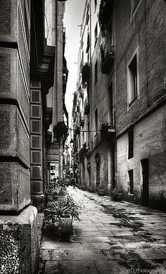 Alley  #landscape #photography #travel
