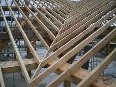 Framing A Shed Roof Diy Pinterest Building