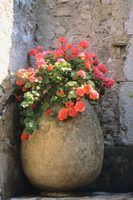 Mixing your own hypertufa will allow you to create any kind of flowerpot you like.