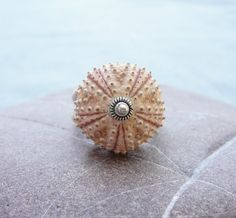 Sterling Silver Sea Urchin Ring Pastel Pink Sultan Ring via Etsy.