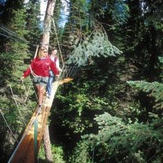 Walk in the tree tops at Whitefish Mountain Resort. A half-day adventure experience that offers a unique view of the majestic forest as you walk on a canopy board-walk suspended 30-70 feet above the forest floor.