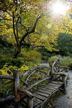 "Shakespeare Garden - Central Park, New York NY - Original image from ""I Do New York"" blog entry dated December 2011"
