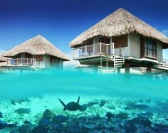 HONEYMOON HOPES!!!!! - Best Overwater Bungalows in Bora Bora and Moorea, Tahiti... Want to go to ALL of these!