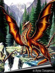 Dragonfly Dragon - NOLAN (TIM'S)