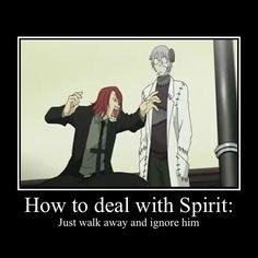 stein and spirit