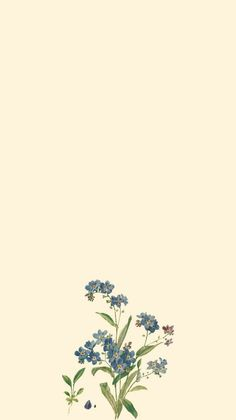 𝐩𝐢𝐧𝐭𝐞𝐫𝐞𝐬𝐭: 𝐝𝐢𝐞𝐞𝐦𝐦𝐢𝐥𝐨𝐭 … – [iPhone Wallpapers] – – Top Motorrad And Wallpaper Tumblr Backgrounds, Cute Backgrounds, Aesthetic Backgrounds, Aesthetic Iphone Wallpaper, Aesthetic Wallpapers, Backgrounds For Phones, Homescreen Wallpaper, Iphone Background Wallpaper, Flower Wallpaper