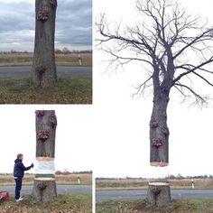 Daniel Siering et Mario Shu sont à l'origine de ce très beau trompe l'oeil réalisé à la bombe sur un arbre (le tronc a été protégé pour que l'arbre ne subisse pas la peinture).  L'arbre parait coupé et en lévitation dans un paysage naturel minimaliste à Postdam en Allemagne.