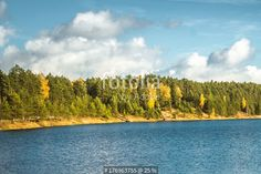 """""""Autumn landscape, forest in a day light in Ogre Blue hills park"""" Stock photo and royalty-free images on Fotolia.com - Pic 176963755"""