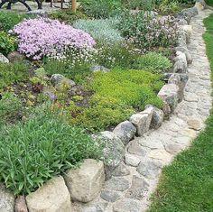 Precious Tips for Outdoor Gardens - Modern Garden Edging, Easy Garden, Garden Paths, Balcony Plants, Outdoor Plants, Outdoor Gardens, Vegetable Garden Tips, Sloped Garden, Dream Garden