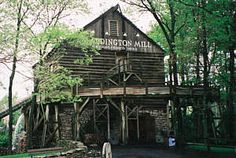 The Cedar Creek Mine Ride, Cedar Point Cedar Point Ohio, Vermilion Ohio, Marblehead Ohio, Cedar Creek, Amusement Parks, Roller Coaster, Cleveland, Childhood Memories, Trail