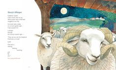 """Sheep's Whisper"" - Amy Ludwig VanDerwater's (The Poem Farm) poem in MANGER by Lee Bennett Hopkins and illustrated by Helen Cann, a beautiful , Kirkus starred anthology of Christmas poems imagining words the stable animals spoke at the moment of the birth of baby Jesus.  Publication Date - September 1, 2014."