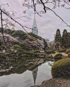 Location: ShinjukuTokyo Japan. 2016/3/29の新宿御苑昼休み20分くらいだけ行ってきたのですが平日の昼でも凄い人いました昨日はまだ5分咲き #rsa_streetview #royalsnappingartists #infamous_family #shotzdelight #rsa_vsco #transfer_visions #tv_hdr #tv_pointofview #ig_worldclub  #igglobalclub #ig_global_life #ig_sharepoint #zamanidurdur #special_shots #photo_turkey#gununkaresi #team_jp_  #turkinstagram #globalcapture  #weekly_feature #wcscapes_city  #udog_peopleandplaces  #igpodium #folkgood #hdrstylesgf #inspiring_photography_admired by ke_nzi