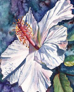 Native Hawaiian Hibiscus Watercolor Painting Original from Kauai Hawaii white red blue tropical flower exotic