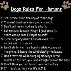 Dog Rules for Humans - so true!