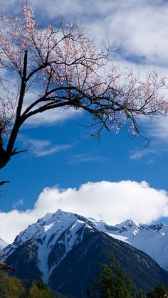 Beautiful View - Tibet, China