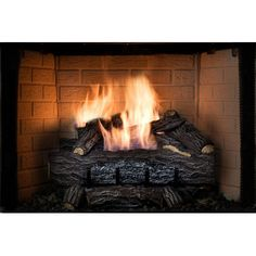 SureHeat Four Seasons Golden Eclipse Manual Burner and Log Set Natural Gas Size: 18''
