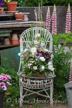 Farm Pictures, Garden Pictures, Garden Chairs, Garden Planters, Chair Planter, Garden Whimsy, Potting Sheds, Old Chairs, Cottage Chic
