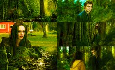 As much as I struggled not to think of him, I did not struggle to forget. I worried—late in the night...Because there was just one thing that I had to believe to be able to live—I had to know that he existed. That was all. Everything else I could endure. So long as he existed. - Bella Swan, New Moon