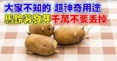 分享出去,讓更多人瞭解馬鈴薯的好處吧!