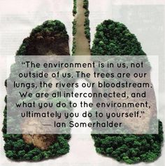 What you do for the environment...