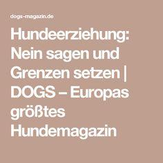 Hundeerziehung: Nein sagen und Grenzen setzen   DOGS – Europas größtes Hundemagazin