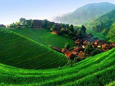 Bali village Indonesia