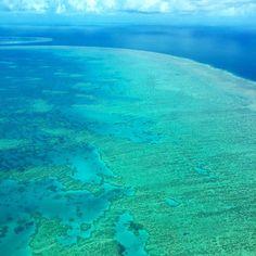 The Great Barrier Reef #australia #aus #greatbarrierreef #whitsundays by huggett87 http://ift.tt/1UokkV2