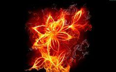 A VOZ DA SELVA AMAZÔNICA: AS DUAS CIGANAS V Meu cabelo conectou-se de tal forma à nuvem de fogo acima do jardim, que tornou-se o própria nuvem de fogo, eu podia sentir e ver meu cabelo espalhando dentro da nuvem de fogo, cada fio do meu cabelo separou-se dentro da nuvem fazendo caminhos como raios de fogo. Línguas de fogo começaram a estourar na nuvem de fogo do meu cabelo, em cima, em baixo e para todos os lados, uma imagem terrível e magnifica ao mesmo tempo.