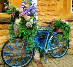 Spring gardening idea! 1.Paint an old bike a vibrant color 2.Attach a few baskets 3.Plant some vines, hydrangeas, annuals and wallah!! Results are fantastic!
