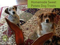 sweet-potato-dog-treats-6