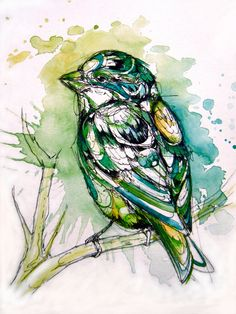One of my good friends painted this amazing bird! She painted an owl for my birthday once! She's such a talented artist! Please go look at more of her work :D!    watercolor bird