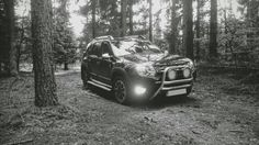 Dacia Duster in The Woods