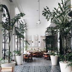 American Trade Hotel Casco Viejo Panama by annariflebond Coffee Shop Design, Cafe Design, House Design, Dark Interiors, Colorful Interiors, Interior And Exterior, Exterior Design, Hotel Concept, Restaurants