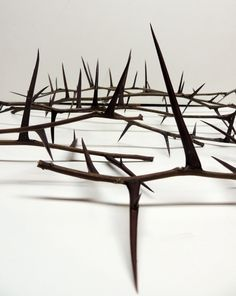 """1 Dozen Honey Locust Thorn Branches 10"""" to 18"""" mixed lengths with thorns attached  woodworking crafting sculpture woodland decor  more"""