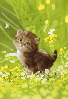 """Muramatsu Cat 8--Not Available"" by kyoto348 | Makoto Muramatsu Cats Postcards Collection, Japan ~ Trade M8 ~ one for Bonte - one for sarkka |  September 5, 2012"