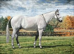 """""""Dutton"""" - Horse Painting by Thomas Allen Pauly"""