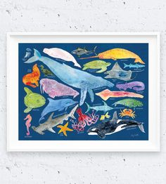 Sea Creature Identification Art Print   Creatures from, near and in the sea congregate on this waterco...   Posters