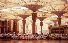 The Prophet's Masjid