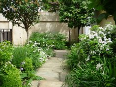 All Gardenista garden design and outdoors inspiration stories in one place—from garden tours and expert advice to product roundups. Serenity Garden, Garden Plants, Garden Design, Design Inspiration, Backyard Ideas, Garden Ideas, Planting, Gardening, Places