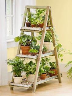 Ladder als plantenrekje