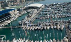 Offerte lavoro Genova  Sì a Cannes Azimut Ferretti Perini Baglietto pronti per Yachting Festival  #Liguria #Genova #operatori #animatori #rappresentanti #tecnico #informatico Nautica: da grandi marchi italiani no a Genova