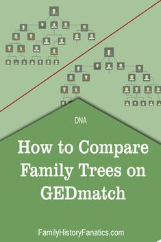 genealogy Do you wish you could compare the families trees of yourself and others and also use DNA matches from multiple platforms? Then you need to read this post! Genealogy Websites, Ancestry Dna, Genealogy Research, Family Genealogy, Family Tree Research, Learning Websites, My Family History, Education, Families